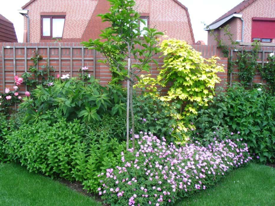 Geliefde Tuinaanleg en tuinbeplanting: lees er alles over GD01